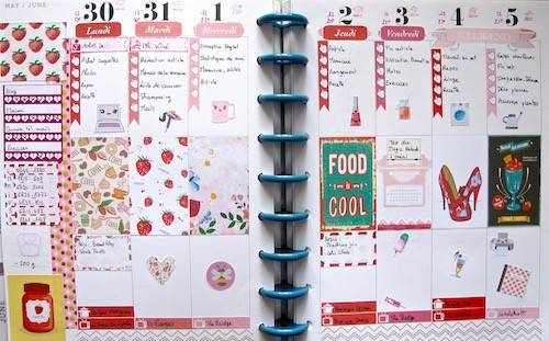 happy planner fraises