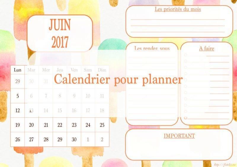 Calendrier à imprimer pour planner juin 2017