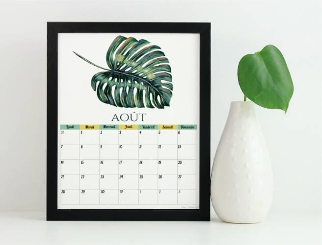 calendriers d'août 2017