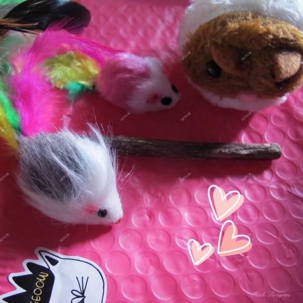 Les jouets de L'Ile aux Chats